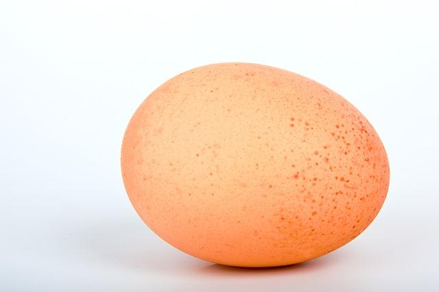 machen eier fett