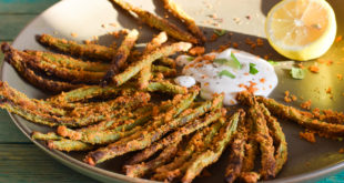 Low Carb Bean Fries